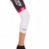 Knee Warmers white